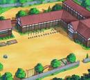 Pokémon Summer Academy