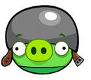 Участники Angry Birds: Выдумки Вики