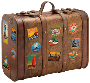 Image Travel Suitcase 1 Png Animal Jam Wiki Wikia