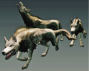 Dragons Dogma Wolves.png