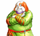 Breath of Fire II Character Images