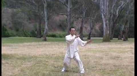 24-Form Taijiquan