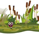 Swamp Floor