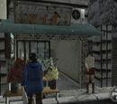 Aida Flower Shop