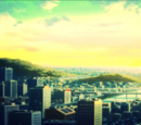 Kota Kagamino