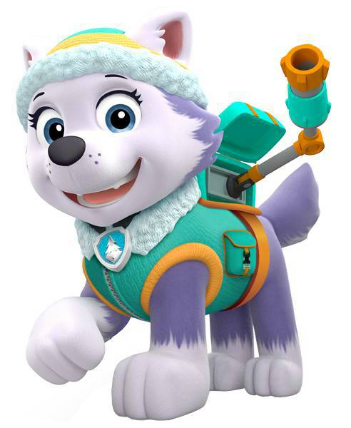 everest   paw patrol wiki
