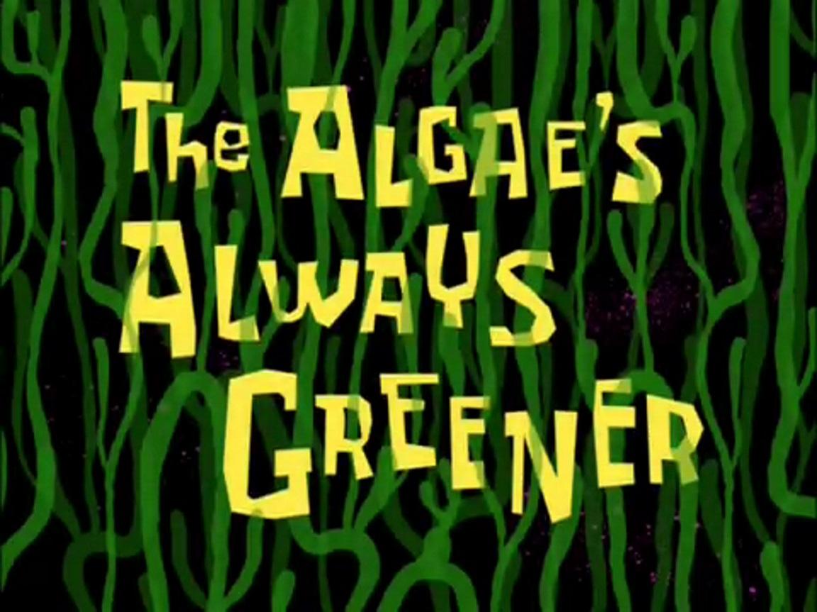 The Algae S Always Greener