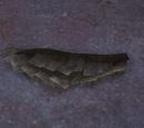 Pseudodog tail