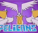 Pelícanos