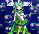 Sailor Moon Secrets & Mysteries
