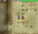 Quicksand Cave