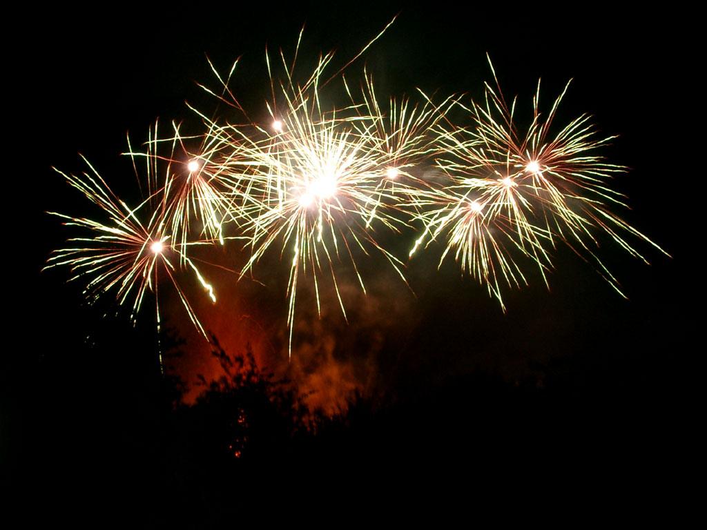 Image - Animated-gif-diwali-fireworks-resolution 139505.jpg - Glee TV ...
