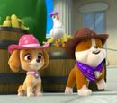 Pups Save a Hoedown/Trivia