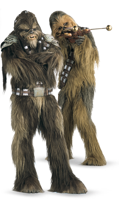 sc 1 st  The Rebel Legion & Rebel Legion :: View topic - Wookiee Costume Standards Discussion
