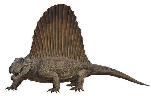 Dimetrodon1.jpg
