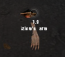 Izlom's arm
