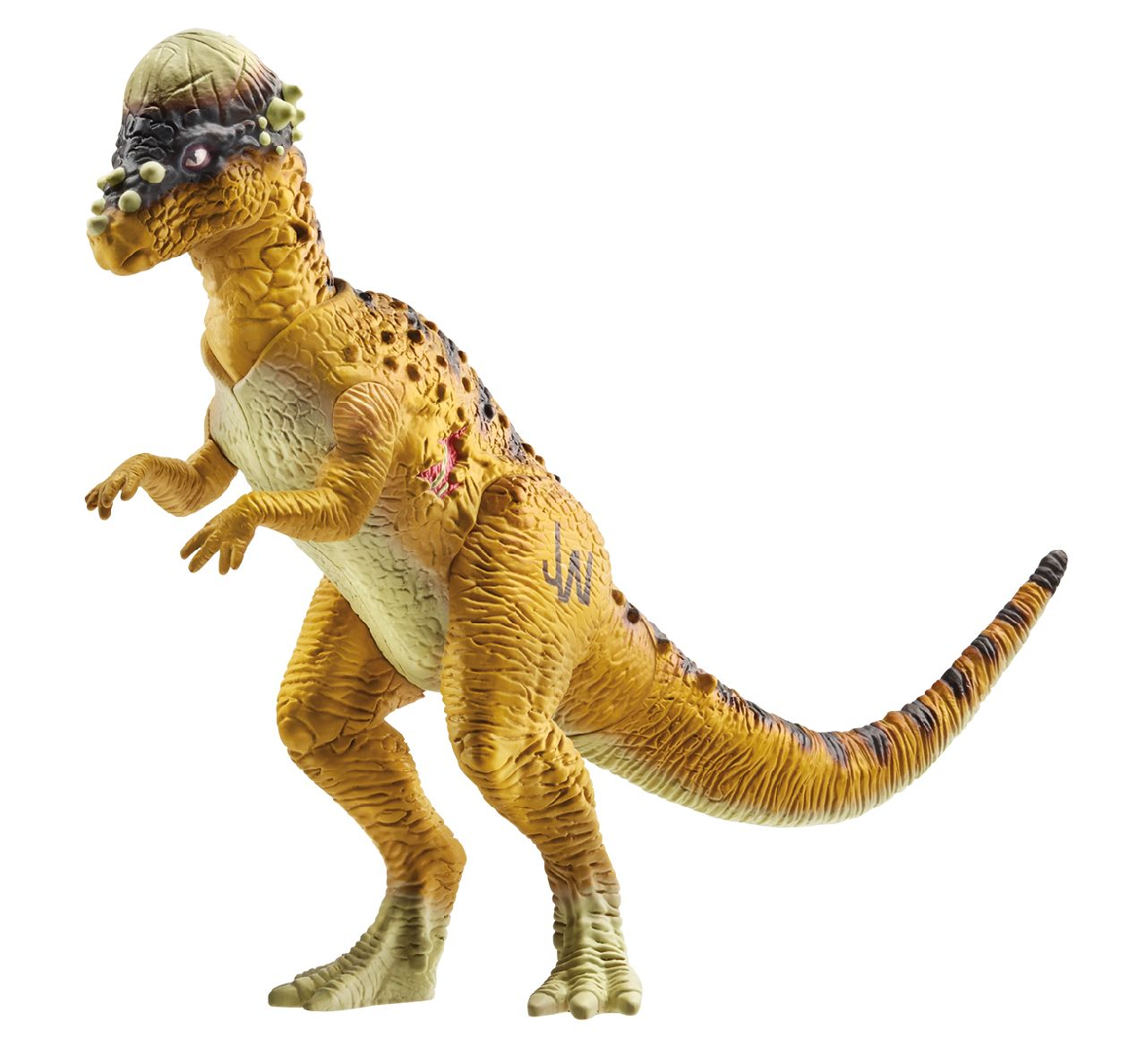 -figure-pachycephalosaurus  Pachycephalosaurus
