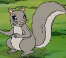 Alphonse (squirrel)