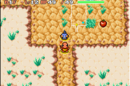 Pokemon Mystery Dungeon Red Rescue Team Thunderwave Cave.PNG