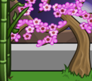 Phoenix Queen's Background