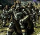 Guerreros de Ulric