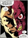 Two-Face 0042.jpg