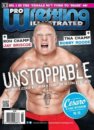 Pro Wrestling Illustrated PWI Magazine February 2009 wwe