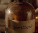 Spirit Oleander
