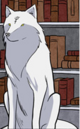 The wolf renard.png