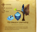 Glauce Leafwing
