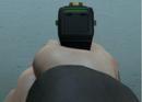 Stun Gun sights GTA V.png