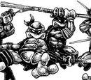 TMNT Heroes