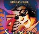 Saltimbanco (DVD)