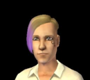 Sims by career (fanon)
