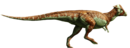 Pachycephalosaurus-detail-header.png