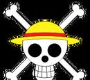 Wikia One Piece: El Nuevo Mundo