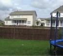 Nathaniel Bandy's Backyard