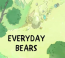 Everyday Bears
