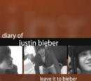 The Diary Of Justin Bieber