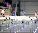 Barb wire hurdles