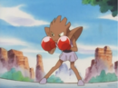Anthony Hitmonchan.png