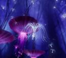 Imágenes de Espiritus del Bosque