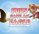 Pups Save an Eagle