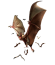RE0 Infected Bat.png