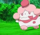 Miette's Pokémon