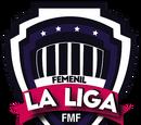 Ligas afiliadas a la FMF