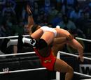 New-WWE Survivor Series 6
