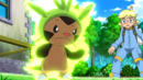Clemont Chespin Overgrow.png