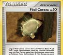 Fósil Coraza (TCG)