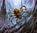 Catacomb Spider